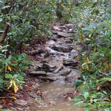 VIDEO: Does this trail have water problems?