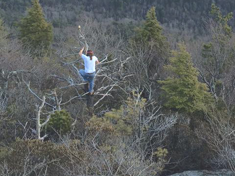 Out on a Limb for the Gorge