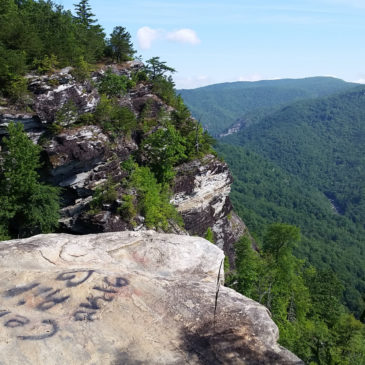 Graffiti Removal at Wiseman's View