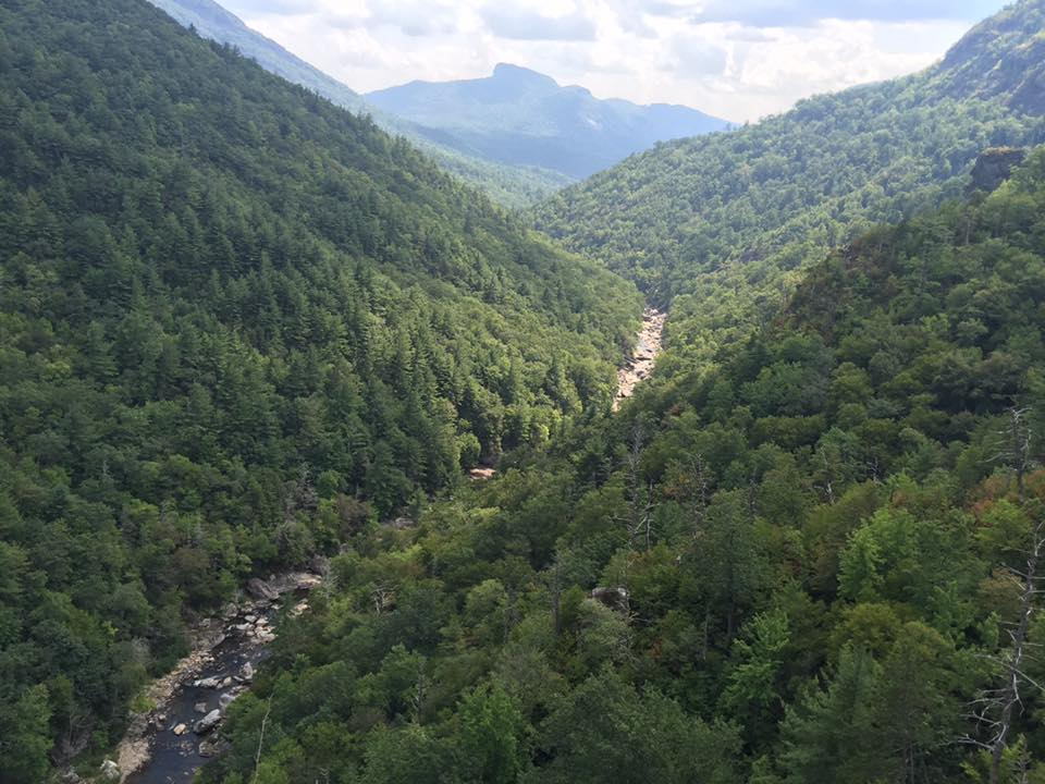 View Hawksbill and Linville River from Babel Tower in Linville Gorge. (Photo: Tim Todd)