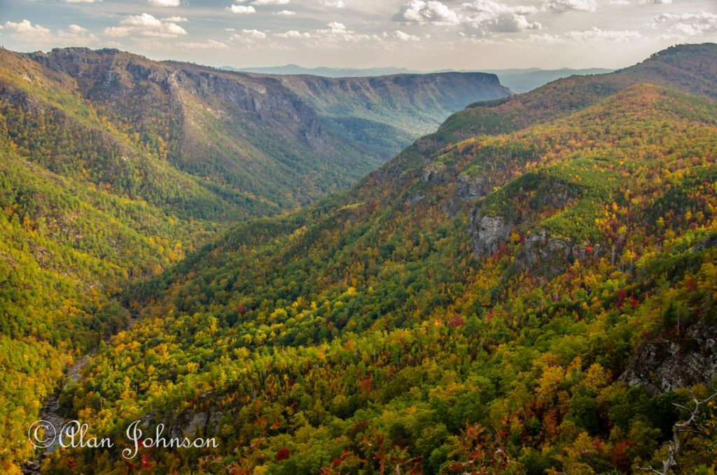 Leaves just now changing colors on the south end of Linville Gorge. (Photo: Alan Johnson)