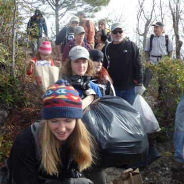 Community Cleanup on Pinnacle